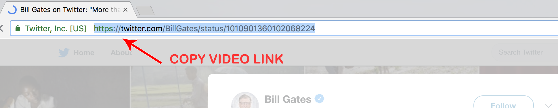 Download Twitter Videos in HD & SD - Tweet Video Downloader